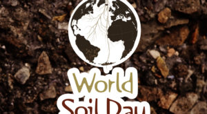World Soil Day - 5 December