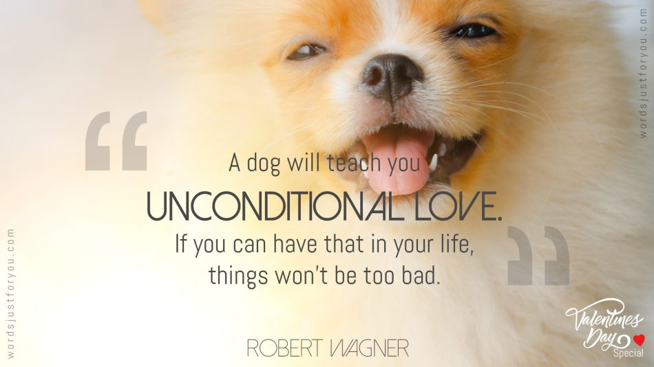 Quote on Unconditional Love by Robert Wagner