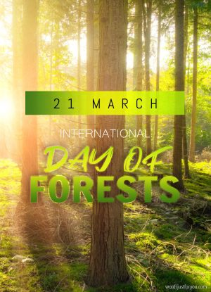 International Day of Forests - 21 March