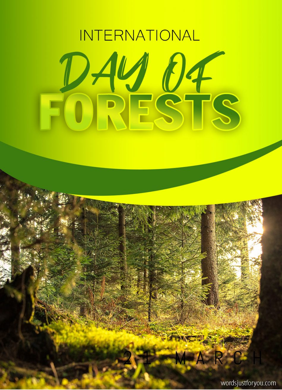 International Day of Forests – 21 March