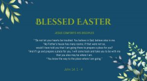 Bible-Verse-John-14-1-4