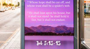 Bible Verse Job 8: 13 - 15