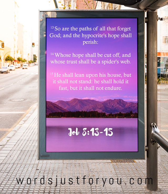 Bible Verse Job 8: 13 - 15 | Words Just for You! - Free