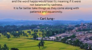 Patience - Quote by Carl Jung