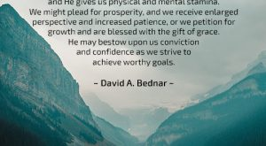Patience - Quote by David A Bednar