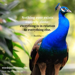 Famous Quote by Buddha