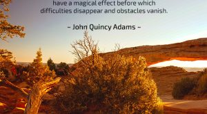 Patience - Quote by John Quincy Adams