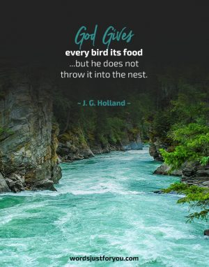 Reality of Life - Quote by J.G. Holland