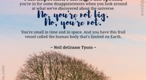 Ego - Quote by Neil deGrasse Tyson