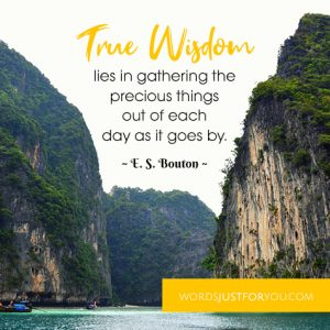 True Wisdom lies in gathering the precious things out of each day as it goes by. Quote by ~ E. S. Bouton ~