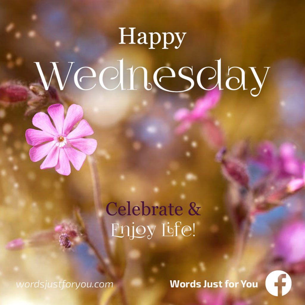 Happy Wednesday Card